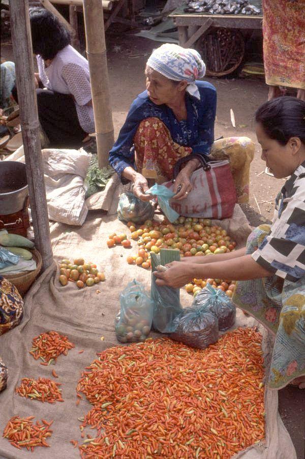 33 12 50 20 >> Lombok 29: Zentral-Lombok - Markt in Barabali